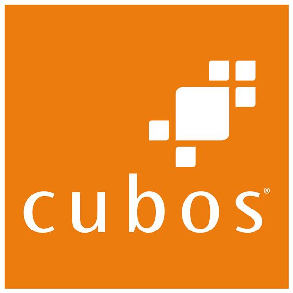 Cubos_Logo_com_contorno_2017-1